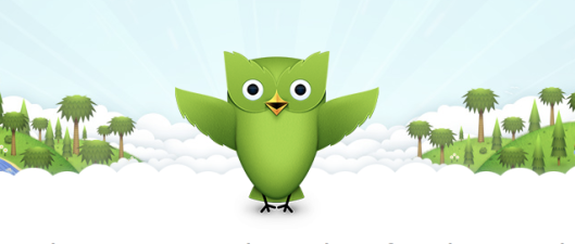 This little guy is your Duolingo mascot.